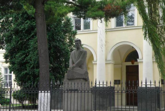 Пам'ятник Василю Стефаникові